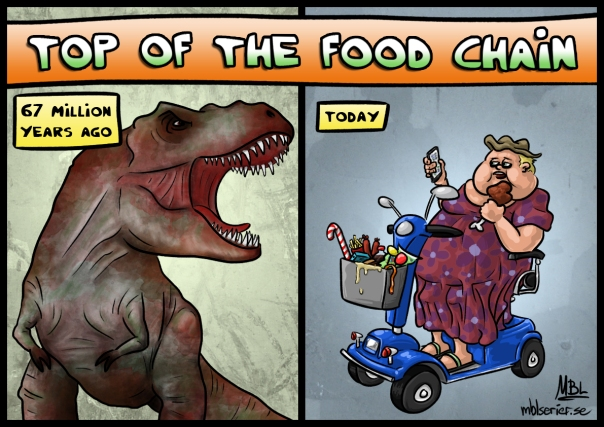 top-of-the-food-chain