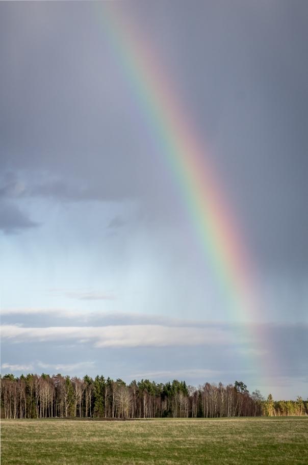 Regnbågen - Robert H